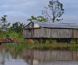 Iquitos Especial
