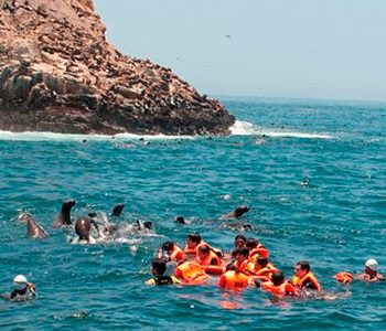 Islas de Callao + Nadar Con Lobos Marinos en Islas Palomino