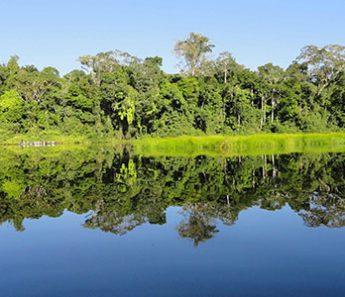 Tambopata Natural y Aventurero