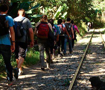 Tour Inca Jungle to Machu Picchu