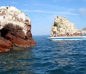Islas Ballestas + Cuatrimotos en Paracas (Todos los Días)
