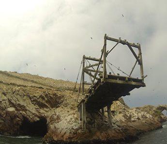 Tour Islas Ballestas en Lancha (Desde Paracas)
